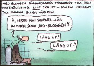 Berglin om bloggande
