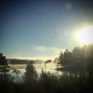 Dimma över sjön